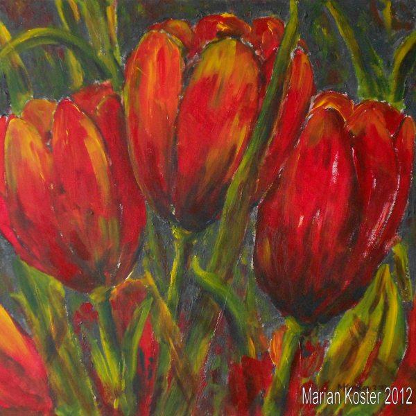 Tulpen 50x50 195 op houten paneel met blankhouten lijst for Schilderijen van bloemen